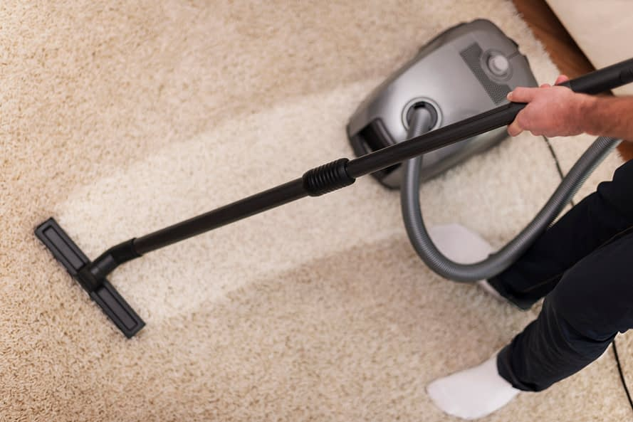 Vacuuming Pet Carpet